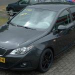 Seat Ibiza 1.2 TDI Wijchen Nijmegen (5)